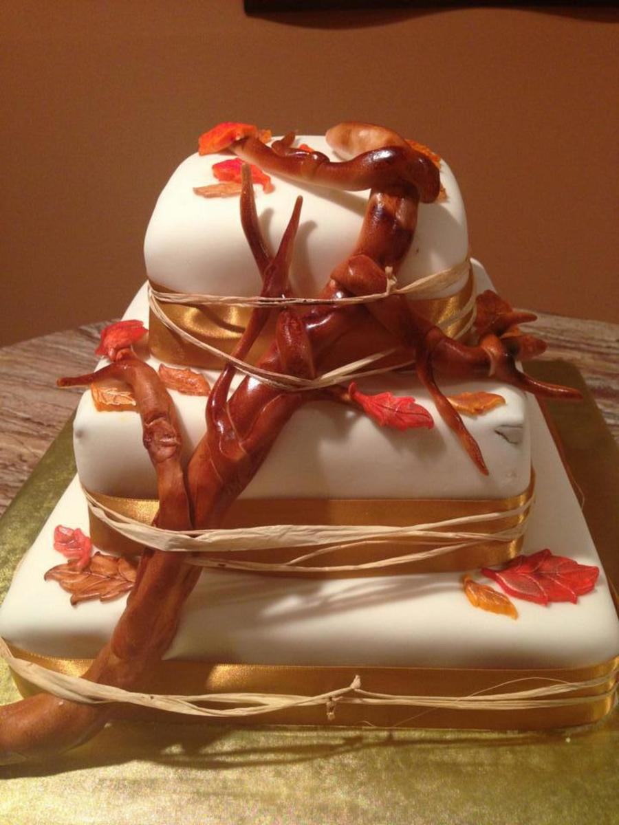 Fall Themed Wedding Cake Fondant Covered Branch Amp Leaves Are Fondant As Well I Used A Hay Like String To Keep The Branch In Tact With  on Cake Central