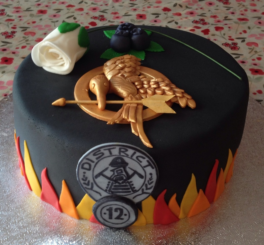 Stupendous My Daughters 14Th Birthday Cake Shes A Huge Hunger Games Fan So Funny Birthday Cards Online Alyptdamsfinfo