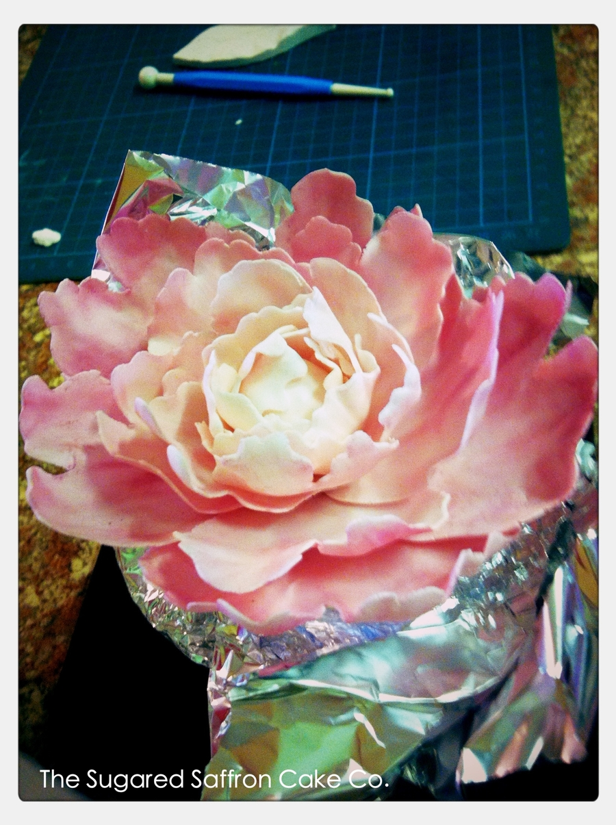 Pink Peony  on Cake Central