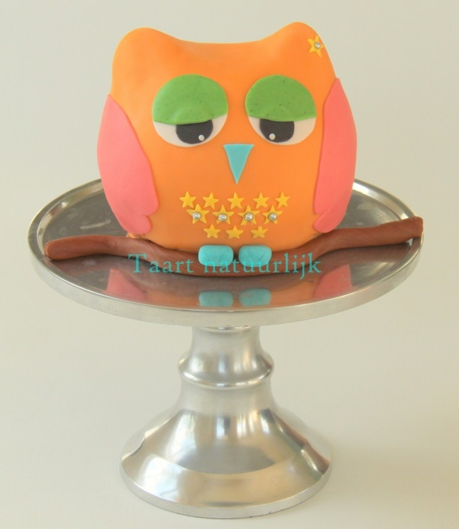 Little Disco Owl on Cake Central