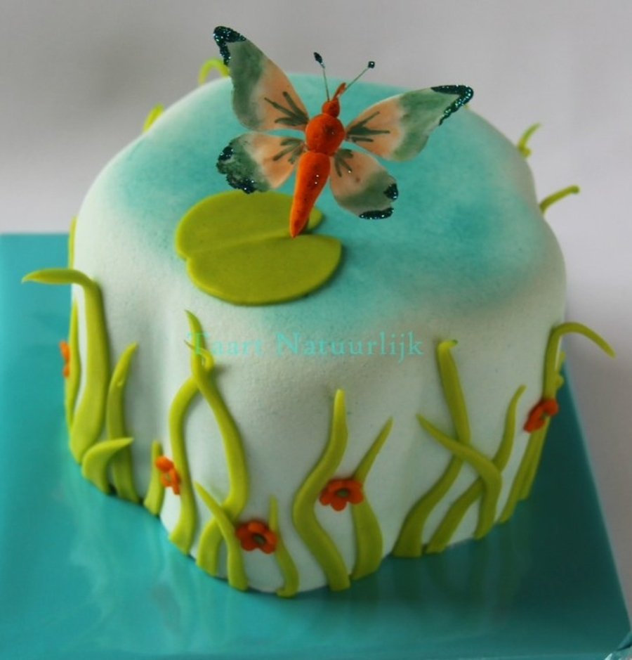 A Pond With A Butterfly on Cake Central