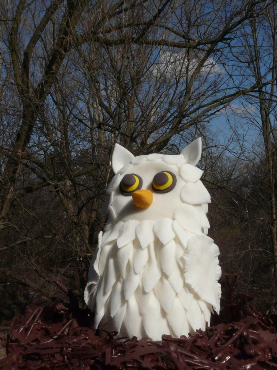 Gum Paste Owl With Chocolate Nest on Cake Central