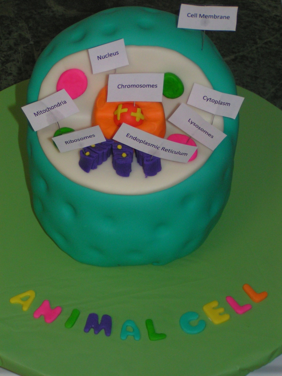 Animal Cell on Cake Central