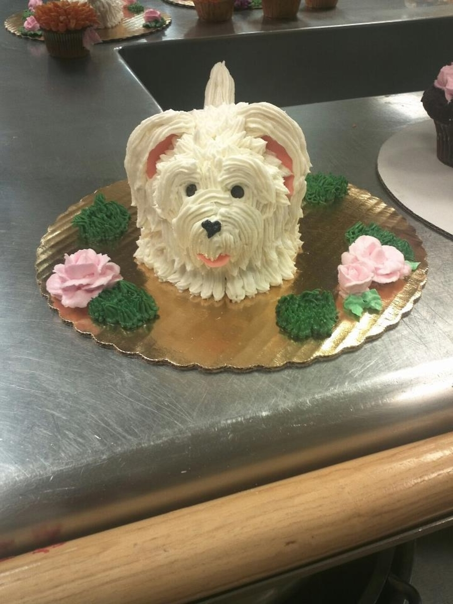 Puppy Cupcake Cake  on Cake Central