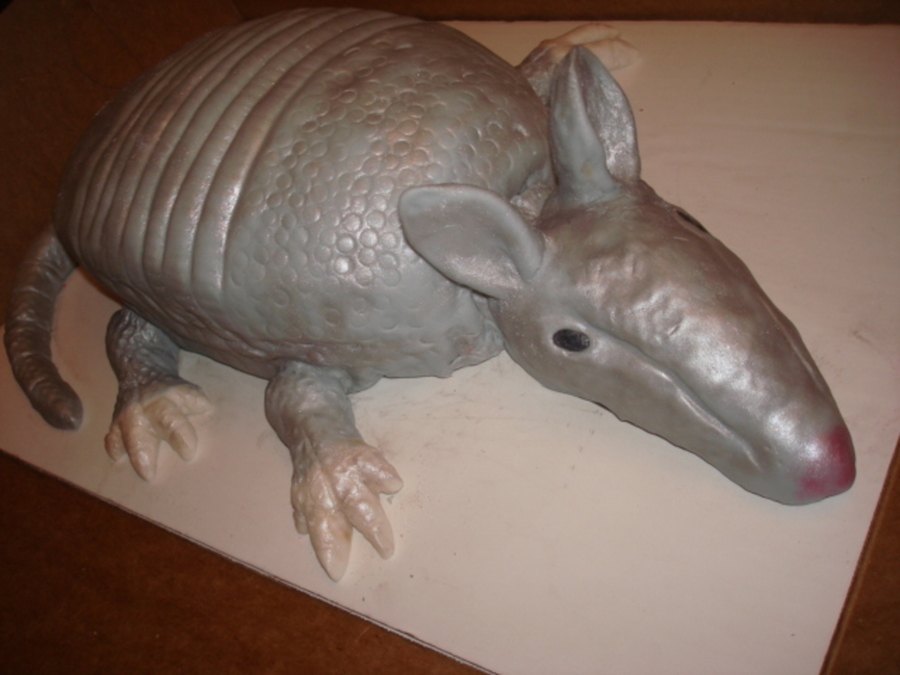 Armadillo Cake on Cake Central