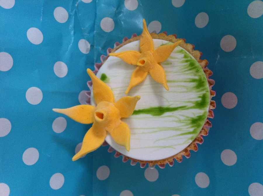 St David's Day Cupcake on Cake Central