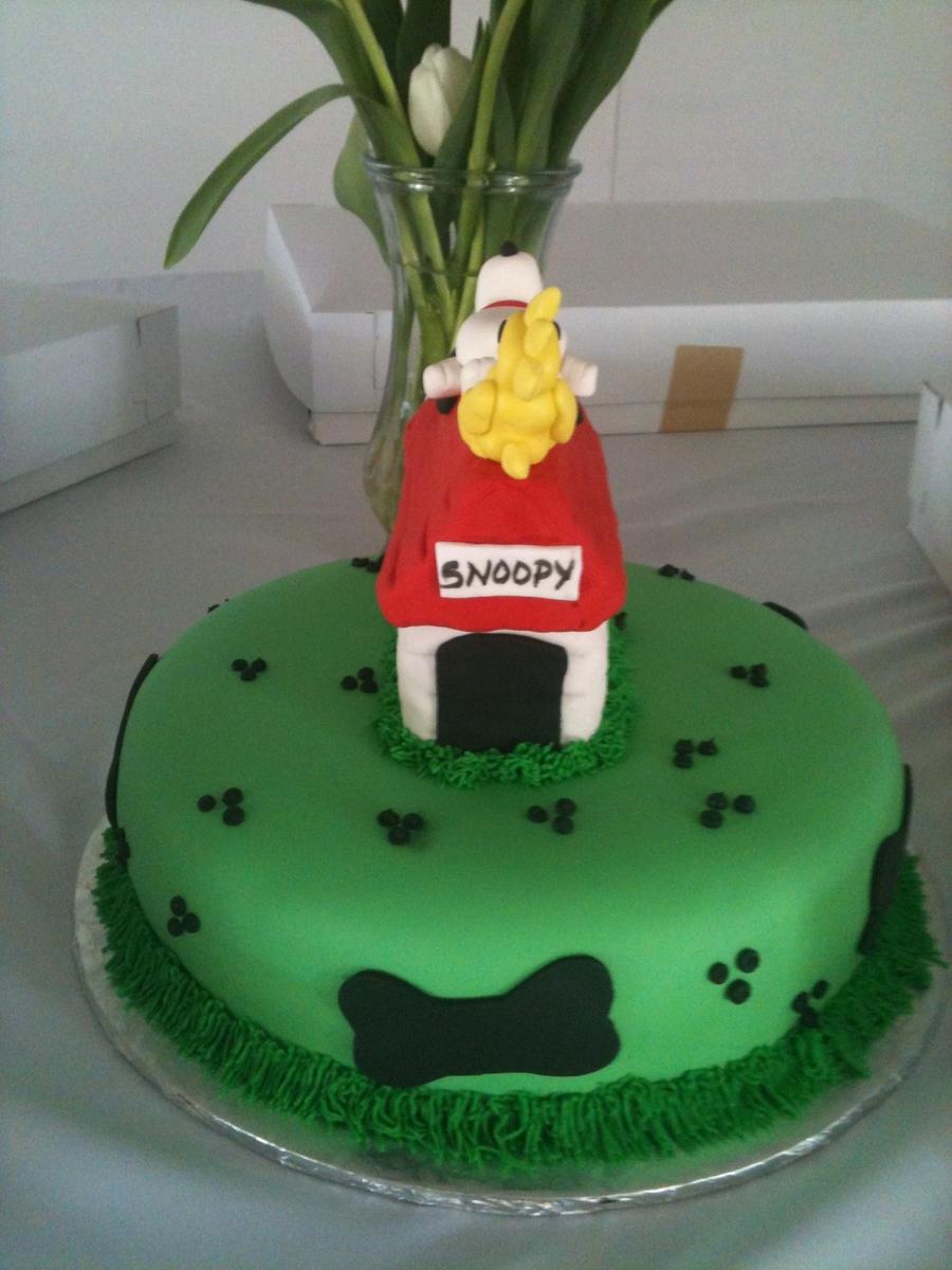 Snoopy Cake CakeCentralcom
