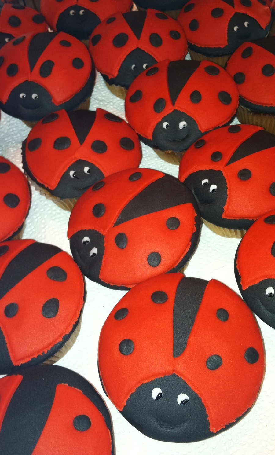 Lady Bug Love on Cake Central