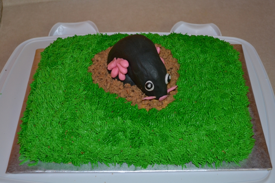 Mole Day Cake on Cake Central