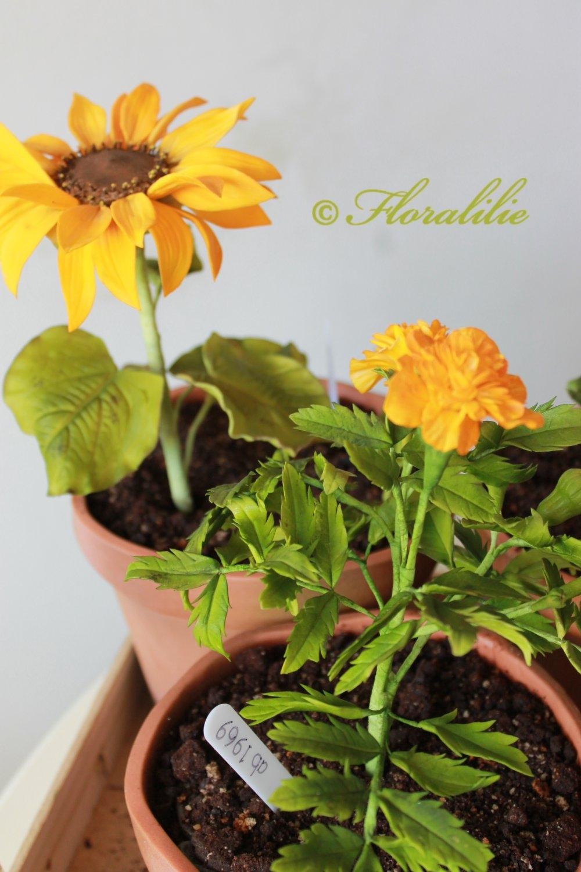 Edible Flower Pots - CakeCentral.com
