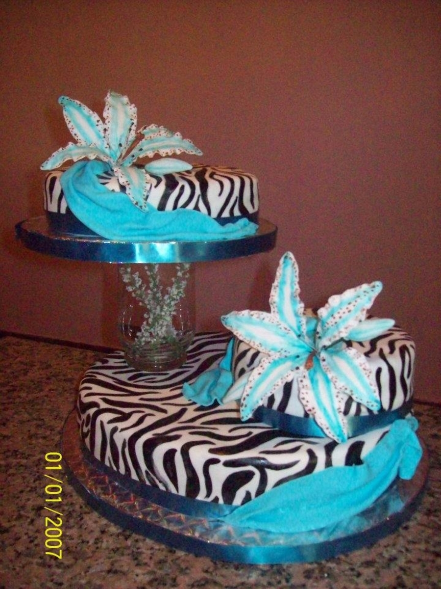 Turquoise And Zebra Cakecentral Com