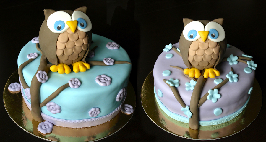 Two Owl Cakes  on Cake Central