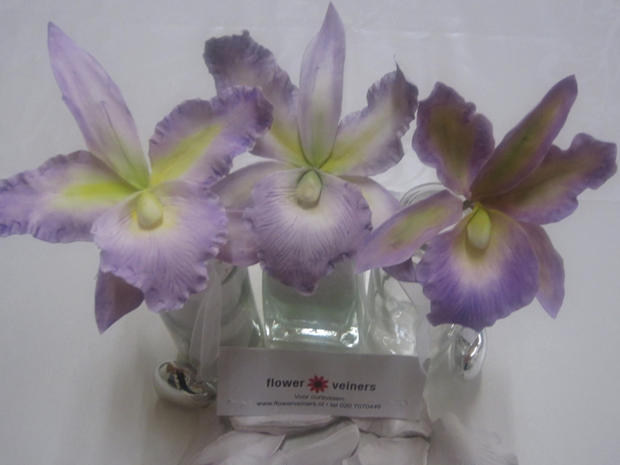 Cattleya Orchids on Cake Central