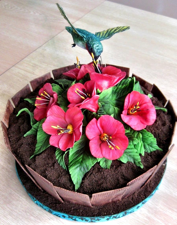 Hummingbird Planter Cake Cakecentral Com