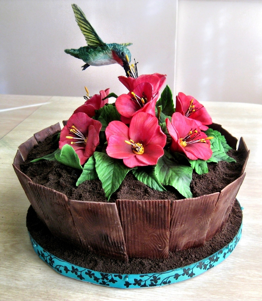 Hummingbird Planter Cake