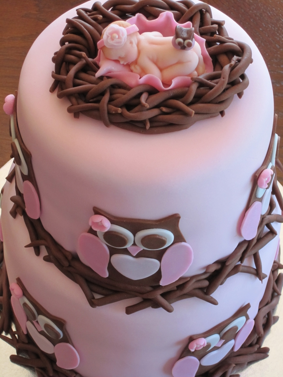 Owl Baby Shower Girl Cake