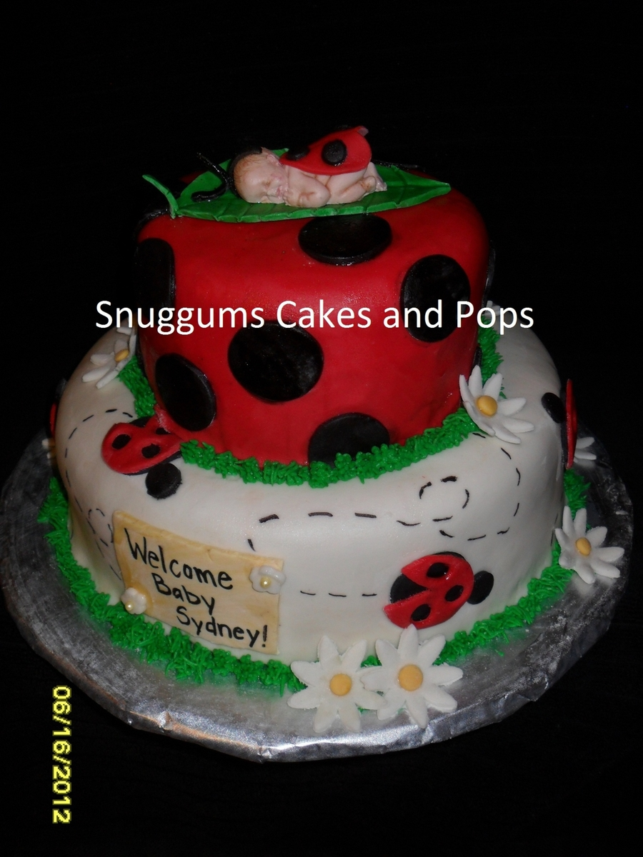 Ladybug Baby Shower on Cake Central