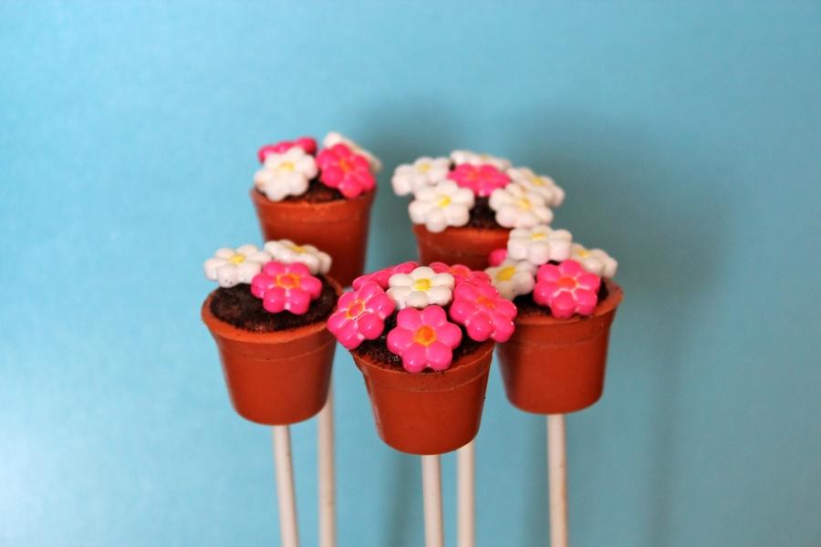 Cake Pop Flower Pot