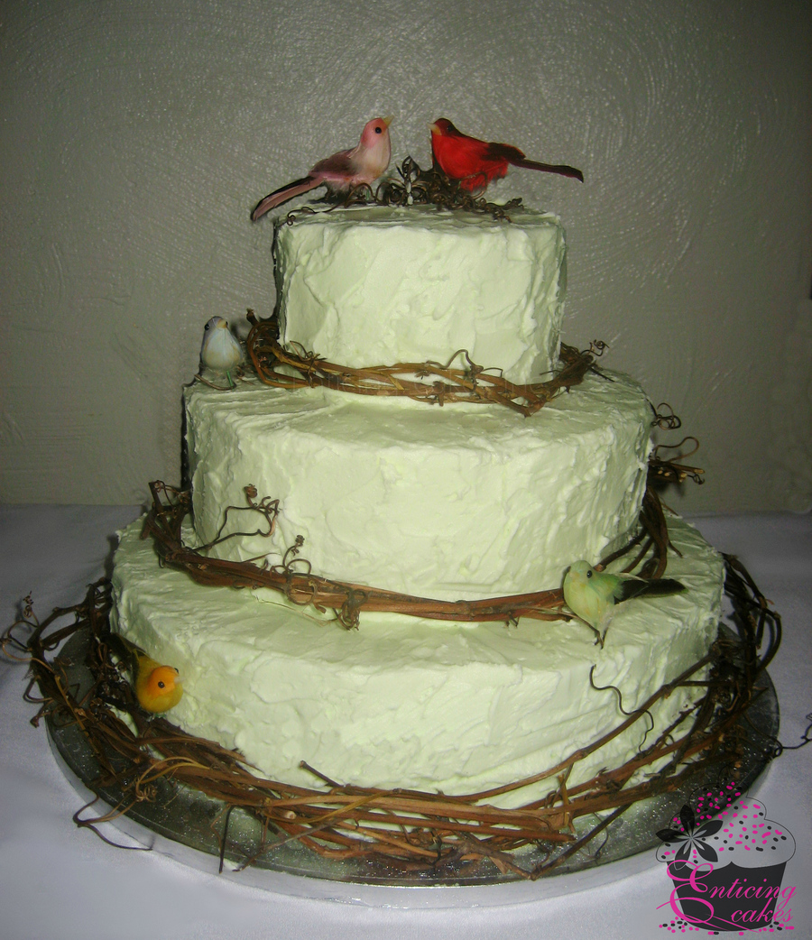 Rustic Wedding Cakes: Rustic Mint Green Wedding Cake