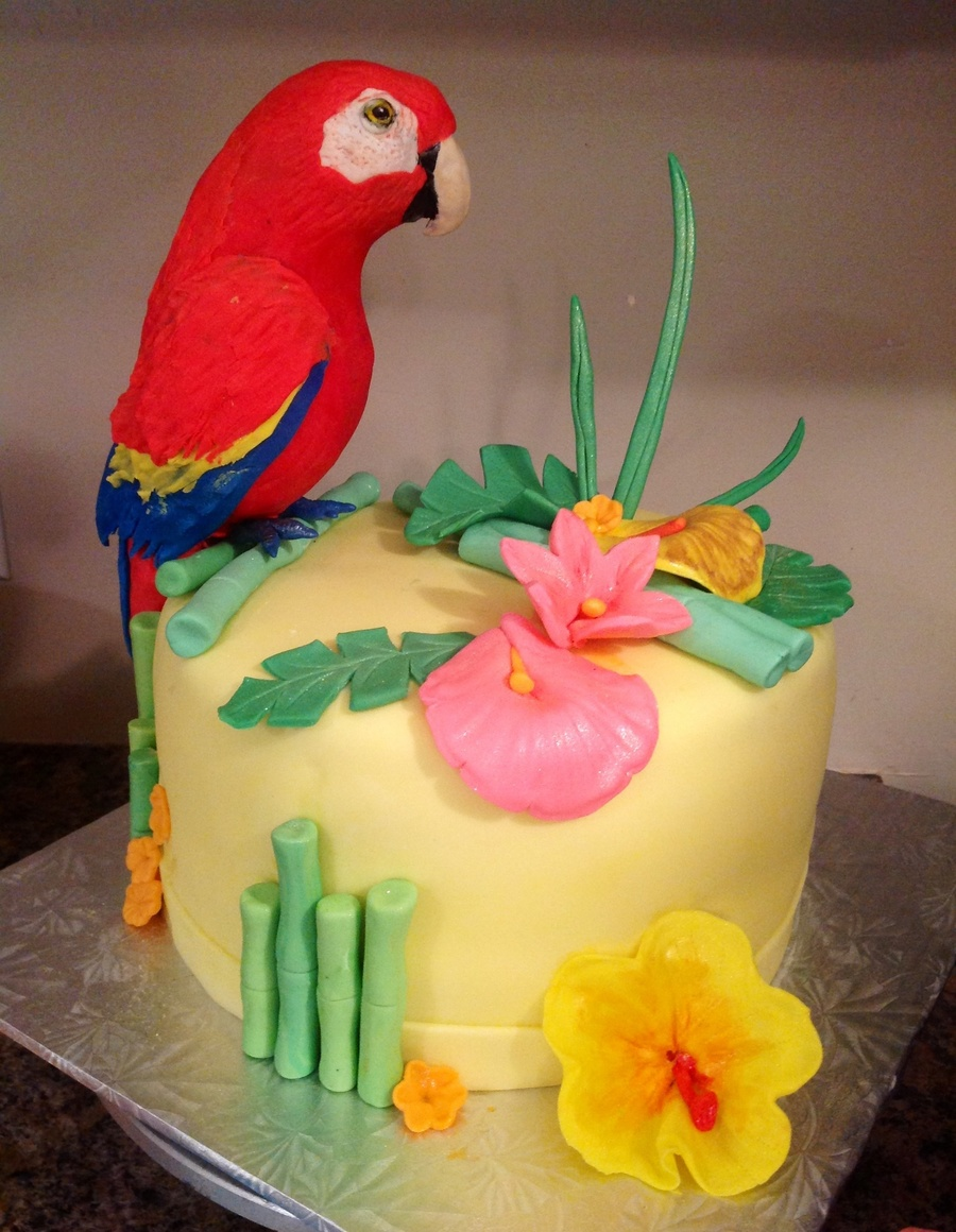 Parrot Cake Images