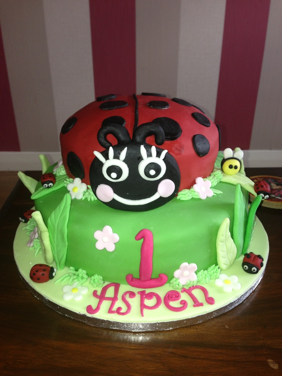 Cool Ladybug Cake For A Ladybug Themed First Birthday Party Funny Birthday Cards Online Kookostrdamsfinfo