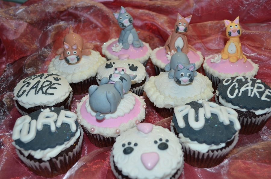 Cat Care Cupcakes on Cake Central
