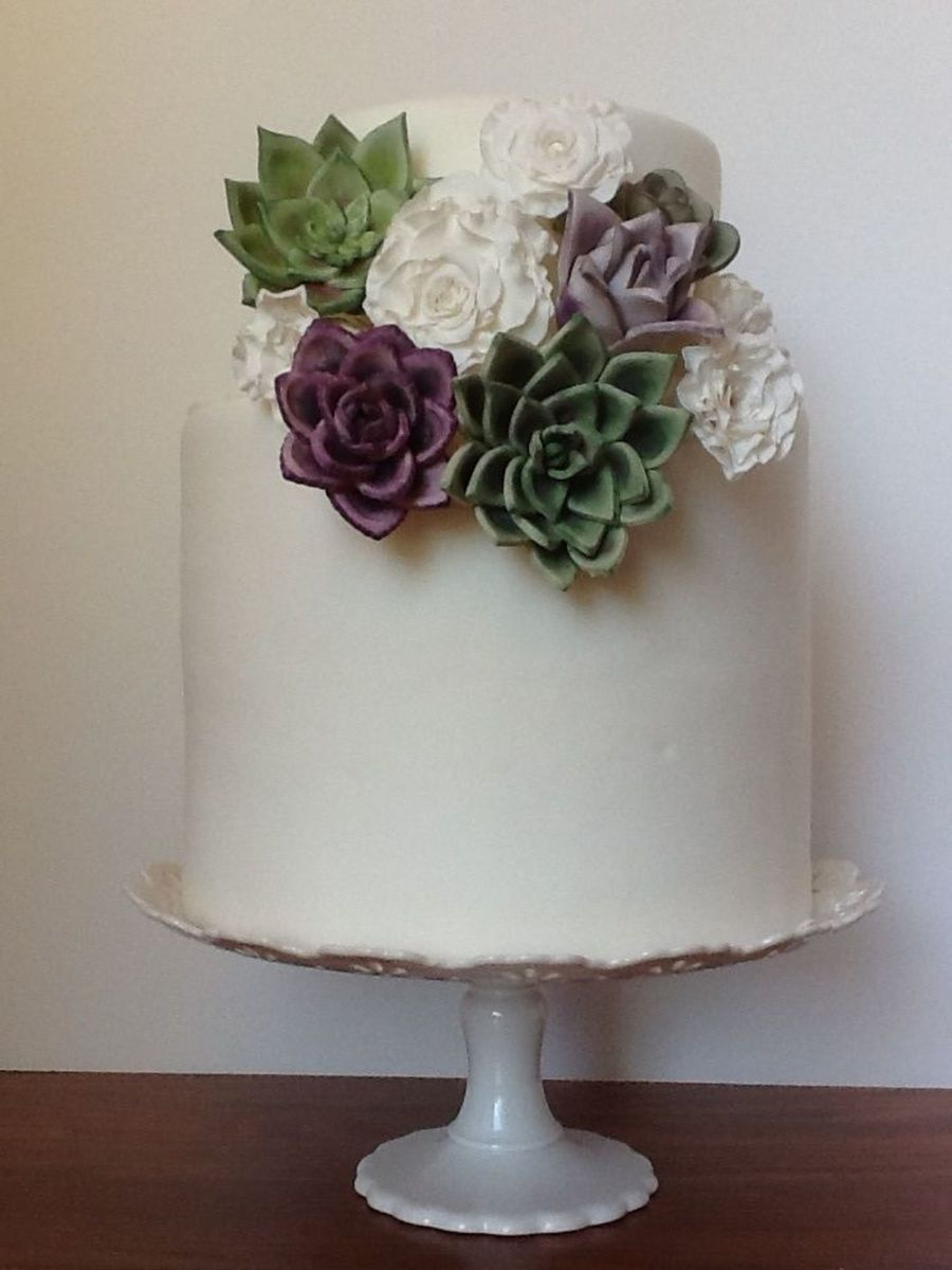 Still Have Lots To Learn About Making Roses But I Really Enjoy Making Succulents on Cake Central