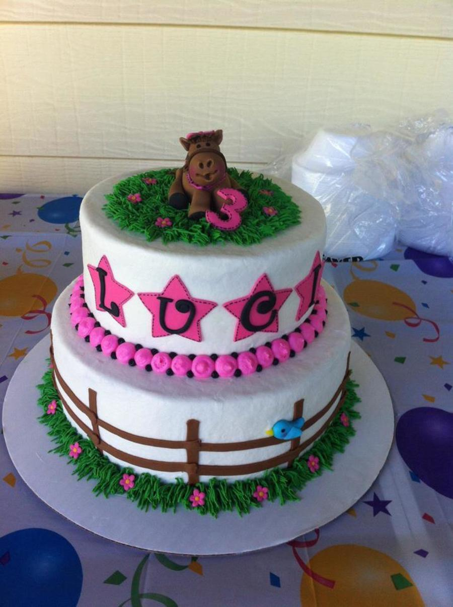Pink Horse Themed Cake  on Cake Central