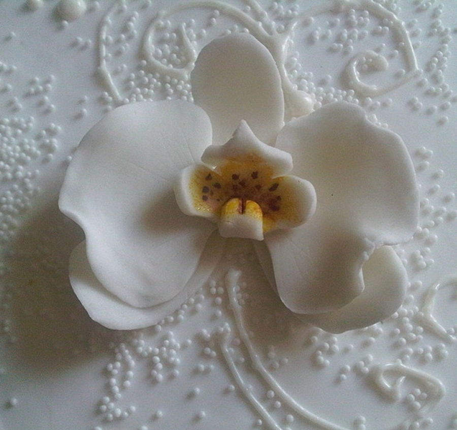 White Orchid on Cake Central