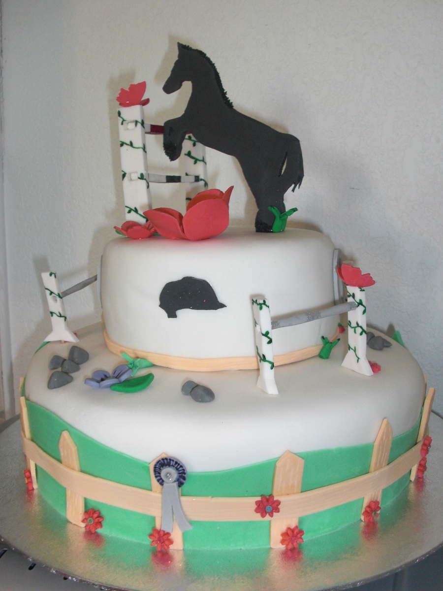 Horse Riding Birthday Cake Cakecentral Com