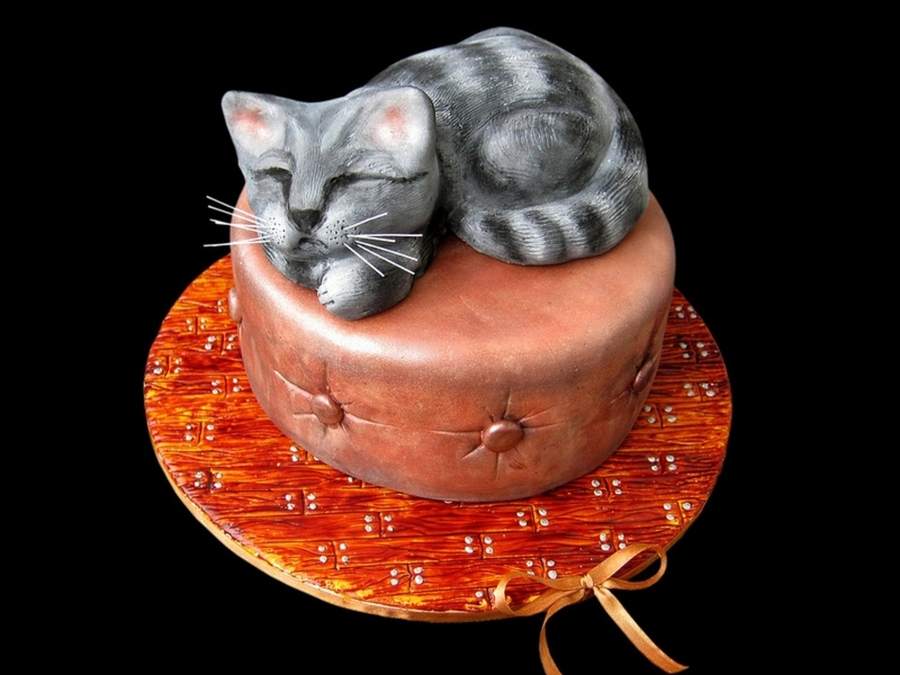 Sleeping Cat Cake on Cake Central