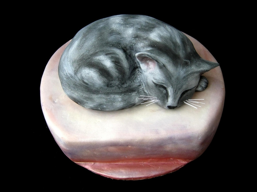 Sleeping Cat Cake 2 on Cake Central