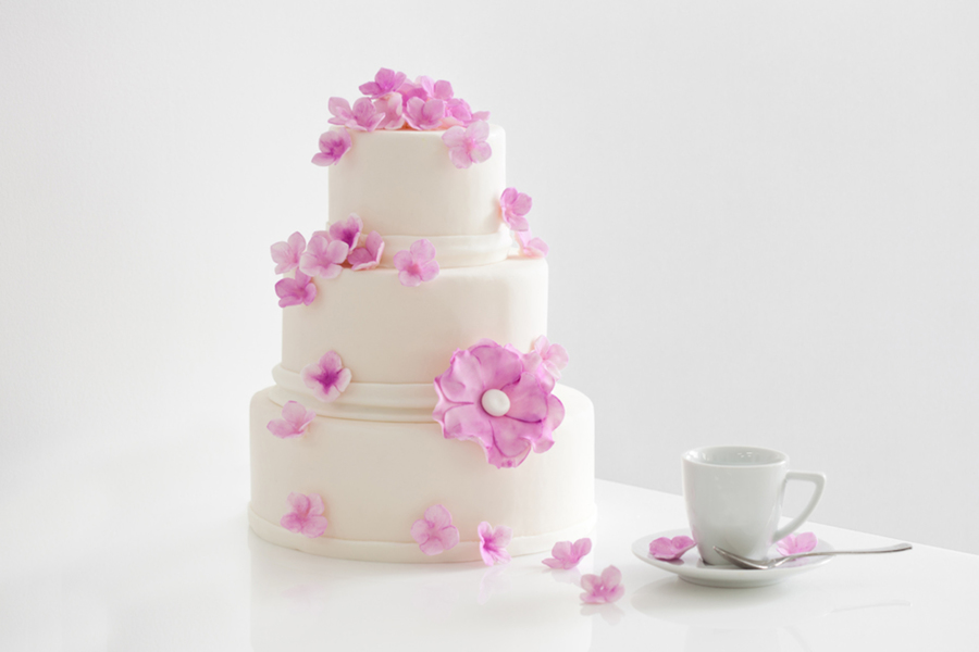Pink Flowered Wedding Cake With Blossoms And Hydrangeas Is Cute And Girly on Cake Central