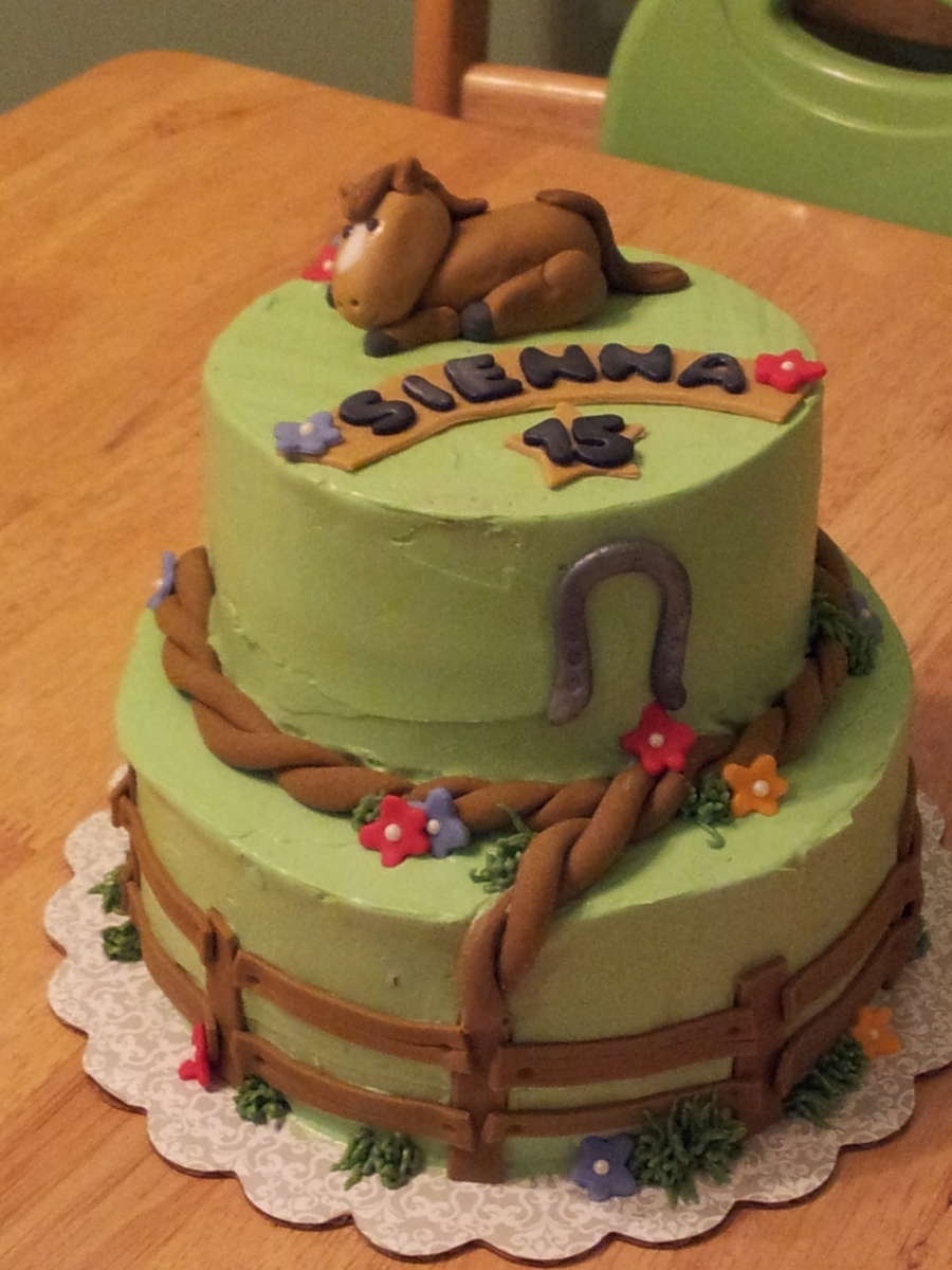 Wondrous Horse Themed Birthday Cake Cakecentral Com Funny Birthday Cards Online Alyptdamsfinfo