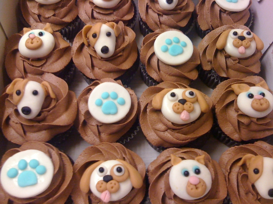 Cats And Dog Cupcakes on Cake Central