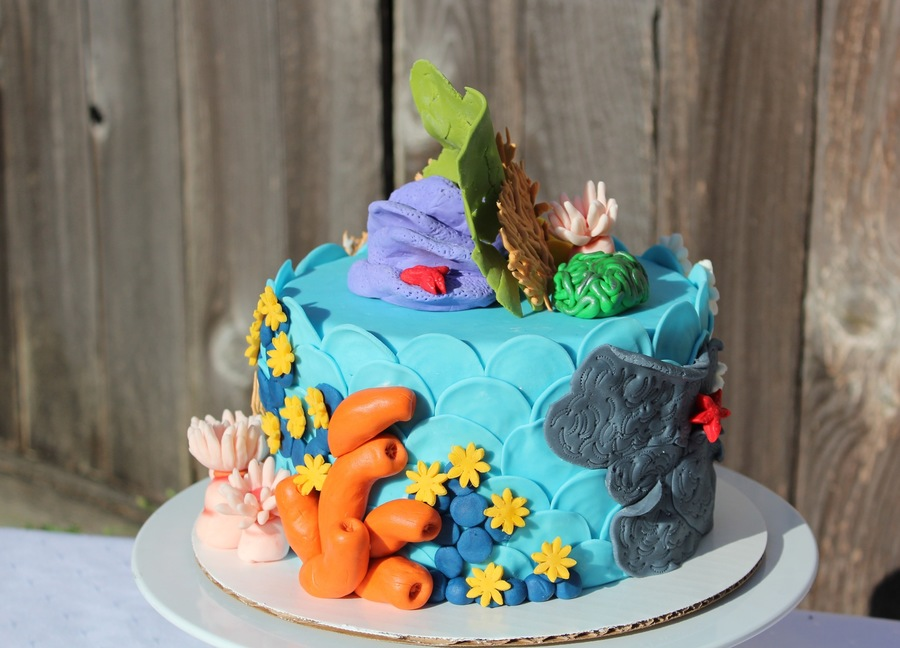 Coral Reef Inspiration Challenge on Cake Central