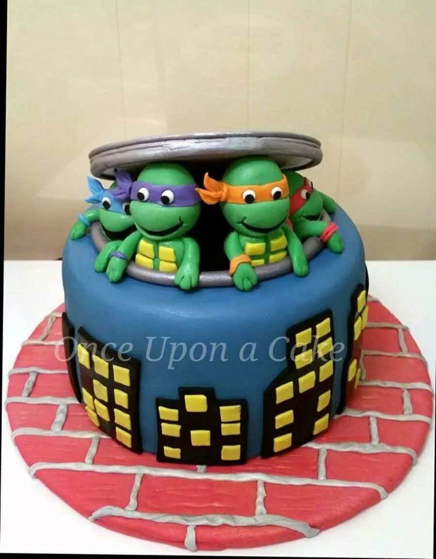 Wondrous 8 Round Chocolate Cake With Teenage Mutant Ninja Turtles Funny Birthday Cards Online Fluifree Goldxyz