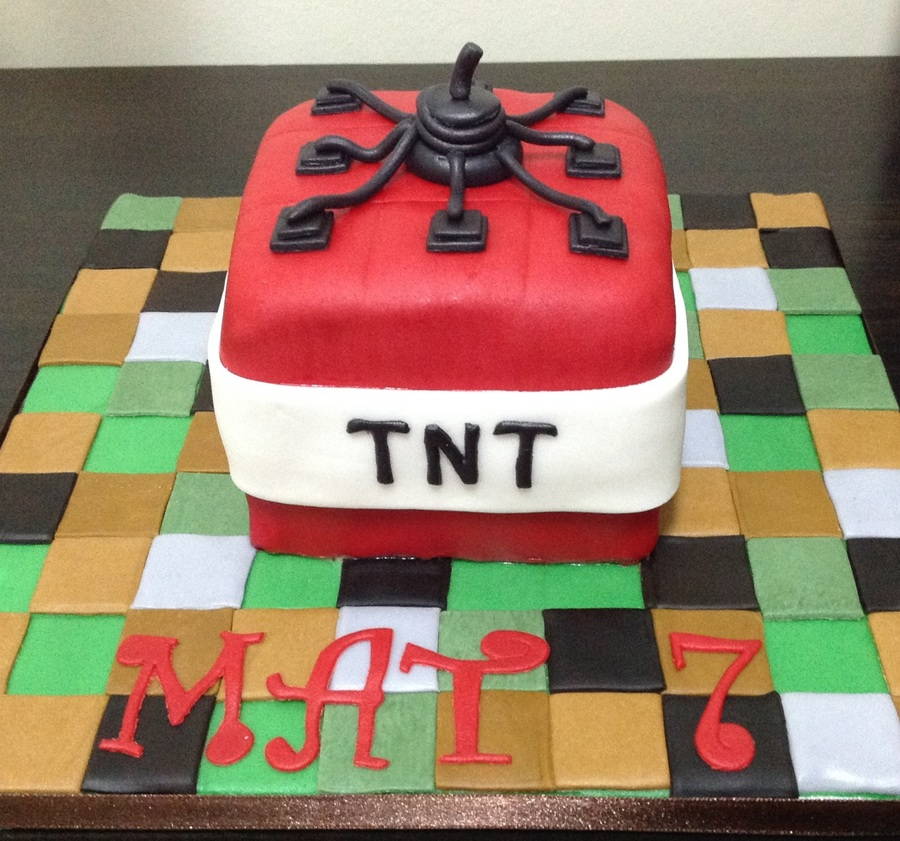 7th Birthday Minecraft Tnt Cake Cakecentral Com