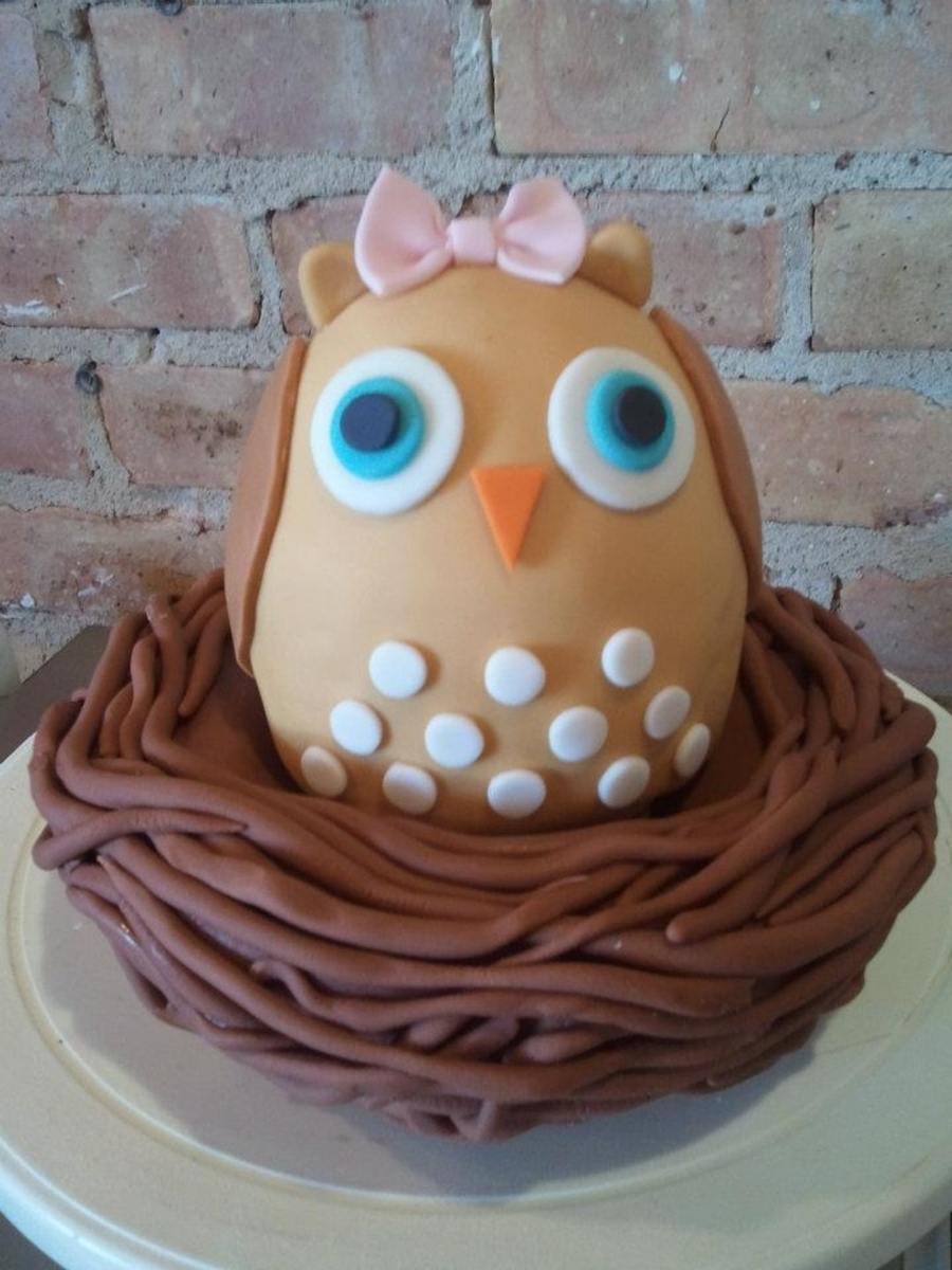 Owl And Nest on Cake Central
