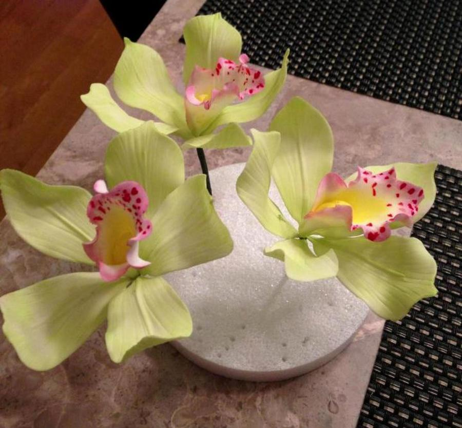 Cymbidium Orchids on Cake Central