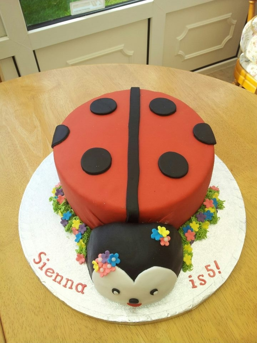Ladybird Cake  on Cake Central