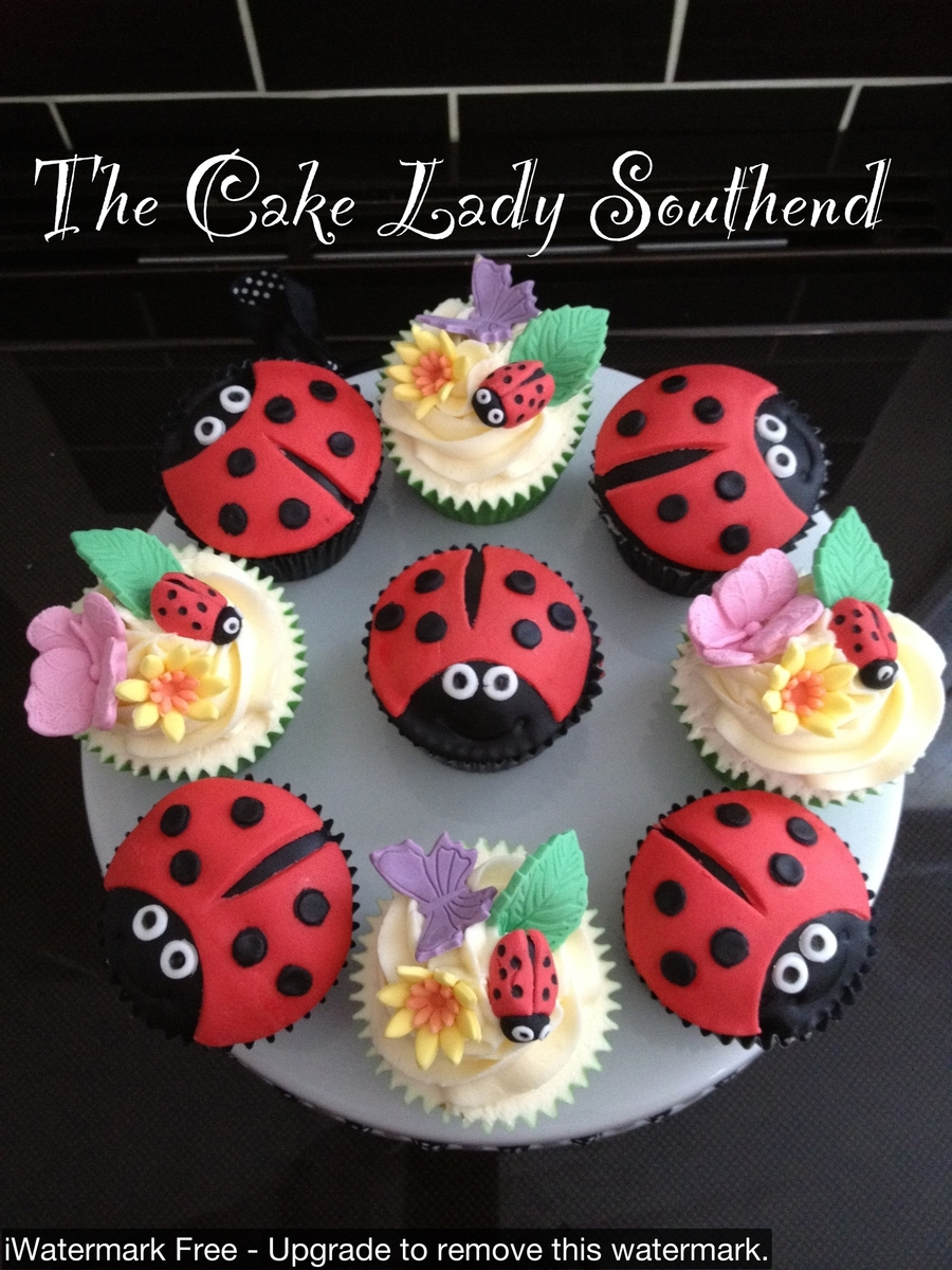 Ladybug And Flowers on Cake Central