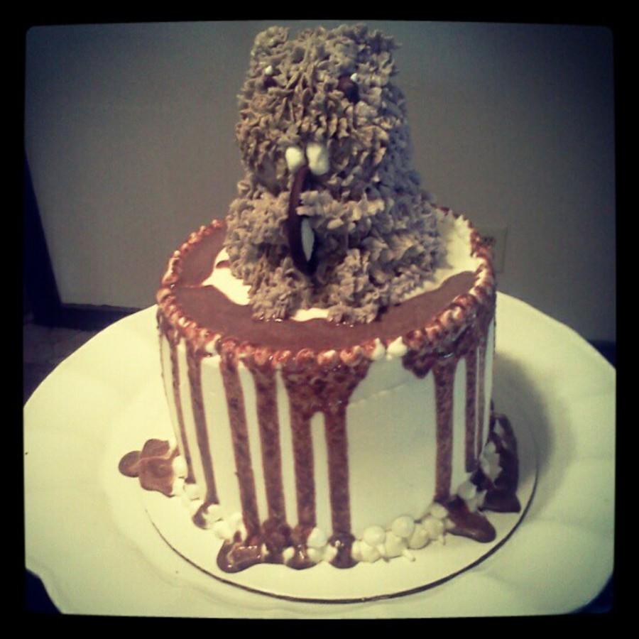 My 8 Yo Birthday Cake Hamster Cakecentral