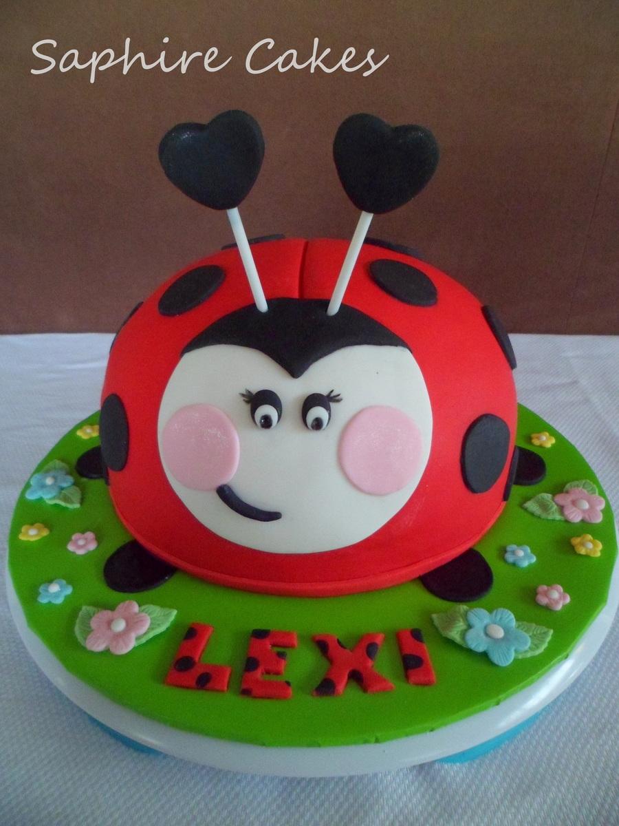 Ladybug Cake Cakecentral Com