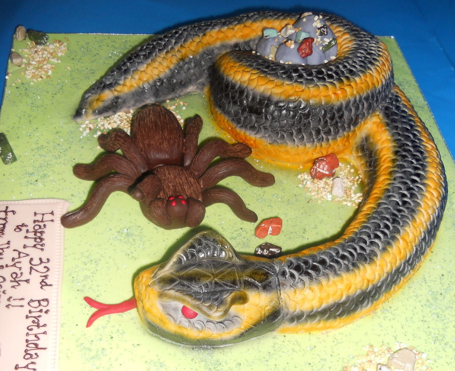 Snaketarantula 1 on Cake Central