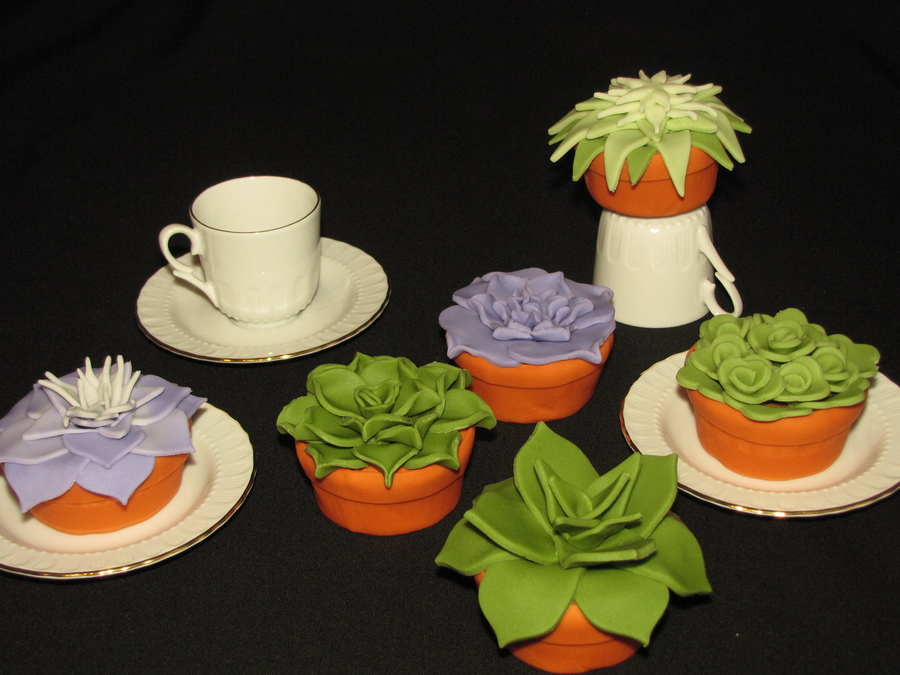 Succulent Cupcakes In Fondant Pots on Cake Central
