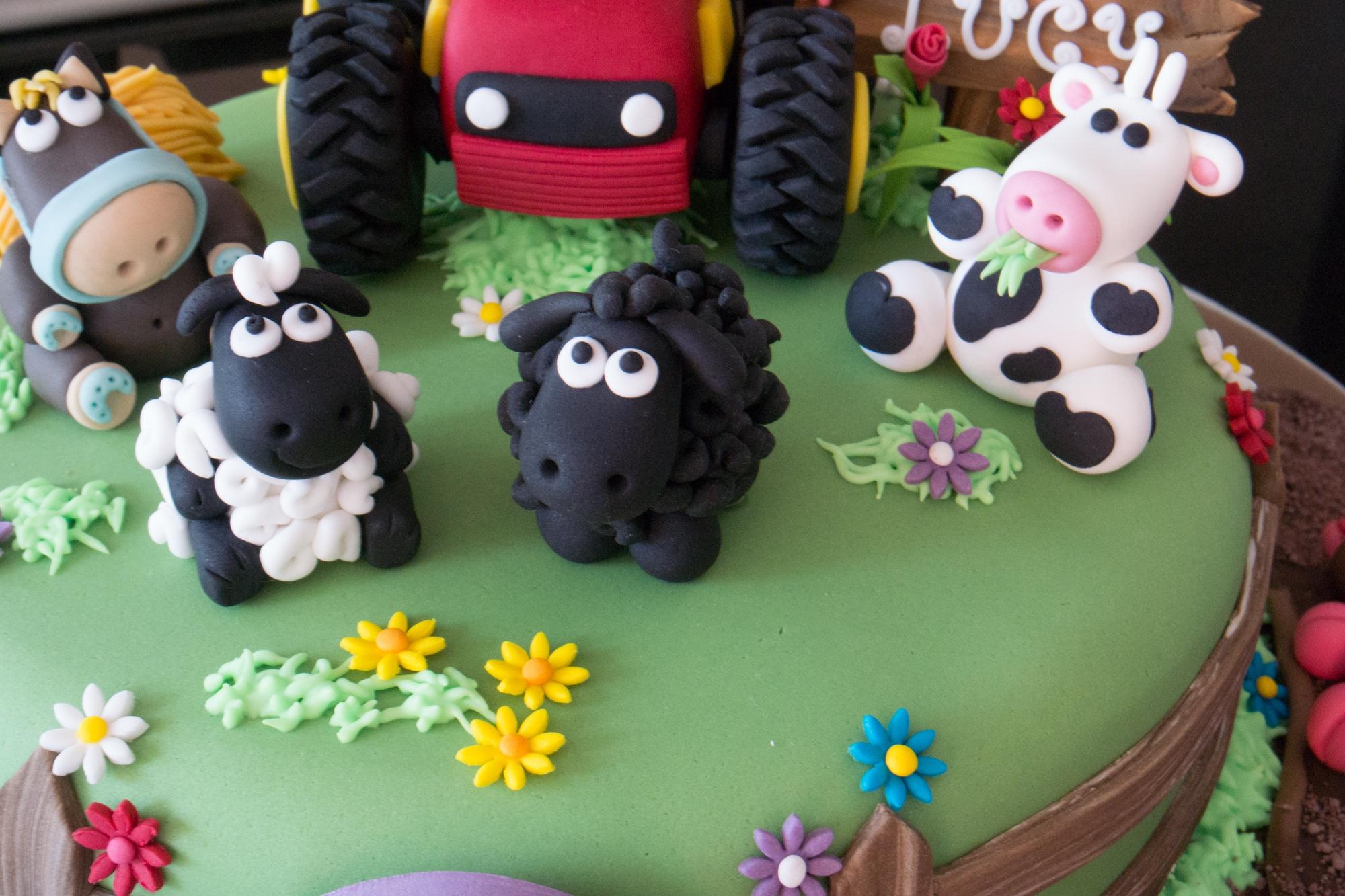 Farmyard Cake Recipe