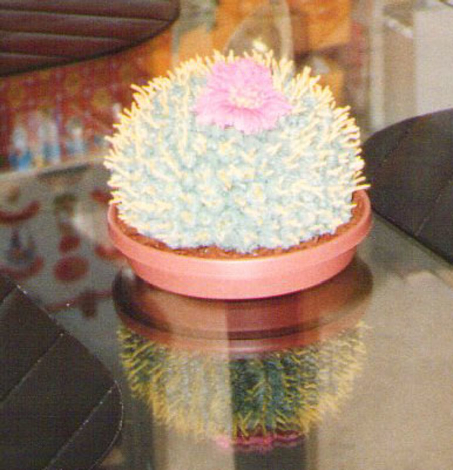 Cactus  on Cake Central