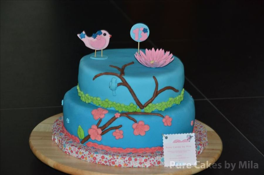 Prime Birthday Cake For 13 Year Old Girl Cakecentral Com Funny Birthday Cards Online Inifodamsfinfo