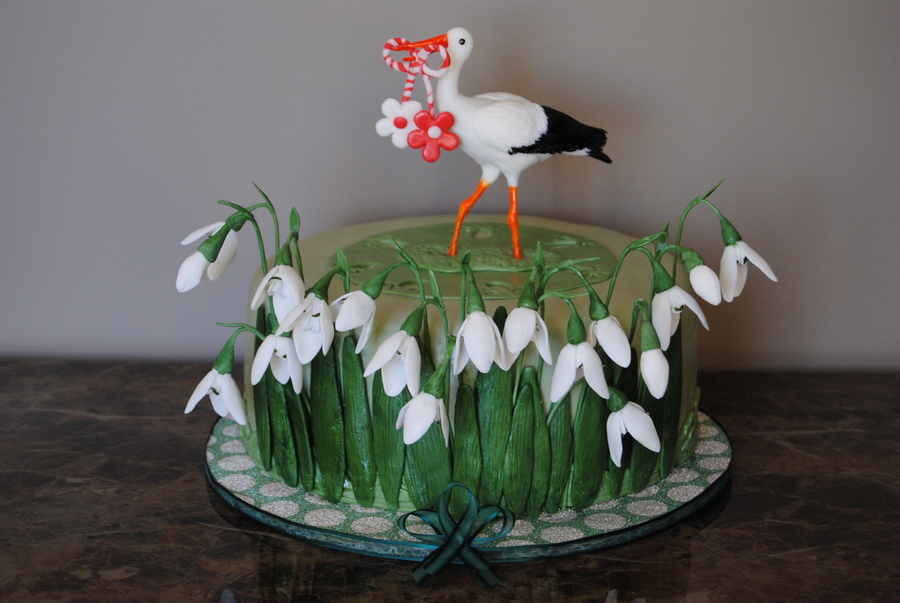 Galanthus And Stork Cake  on Cake Central